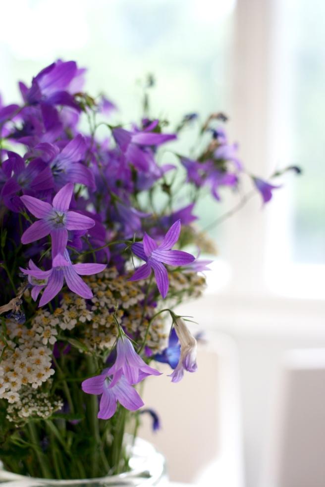 lilat kukat