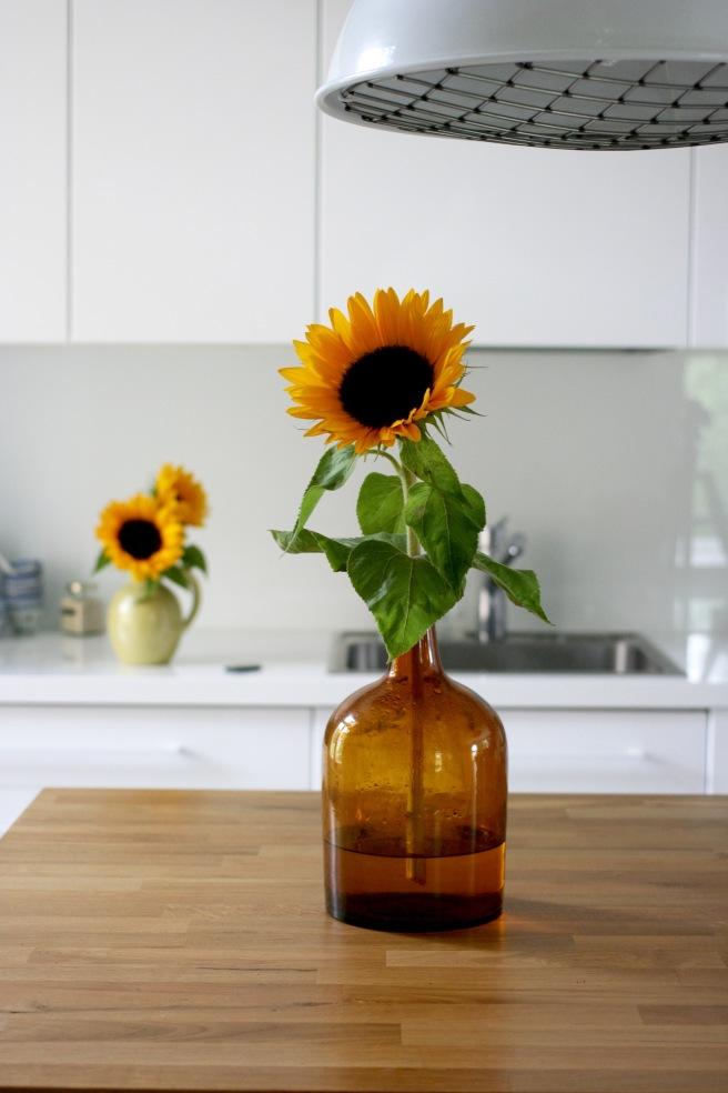 vanha lasipullo, auringonkukka