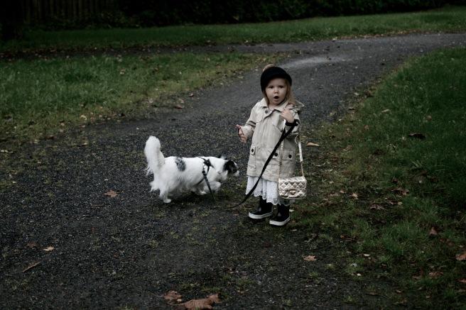 lapsi ja chihuahua