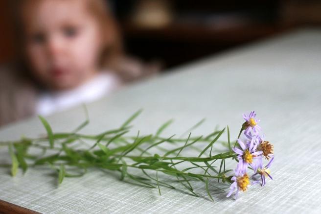 lapsi ja kukat