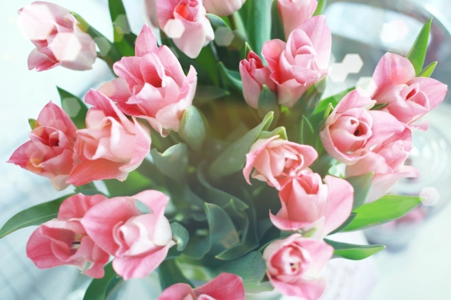 Tulips, flowers, beautiful boquet