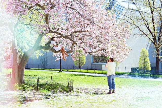 New York keskuspuisto, mitä tehdä new yorkissa