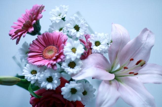 kukkia, kaunista