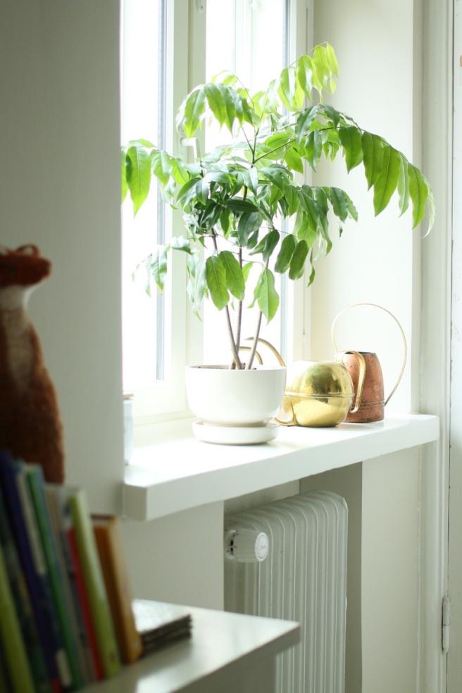 keittiön leveät ikkunalaudat